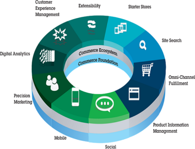 IBM B2B Commerce