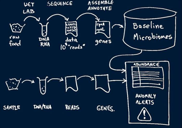 IBM Analytics Process_blue background